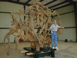 Tornado Seed and Artist John Davis