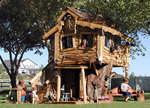 """""""Another Awesome Tree House"""""""