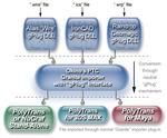 gPlugs Importer Diagram