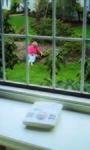 LifeGuardian In Window