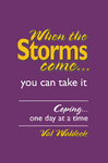 When the Storms Come by Val Waldeck
