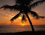 Sunsets In Maui at  www.TravelExpert.us