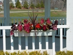 Planters hang on gazebo