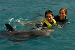 Dolphin Therapy in seawater at CDTC. Photo 2 of 2.