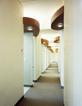 Intriguing designs provide visual stimulation to a long hallway