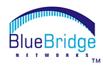 BlueBridge Networks, LLC