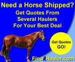 FindAHauler Horse Image