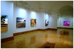 Canvas Art Gallery