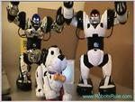 Robosapien & Friends