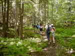 New Life Hiking Spa hikers in the Green Mountains