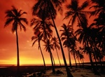 Find luxurious lodging in Maui, Hawaii at www.TravelExpert.us