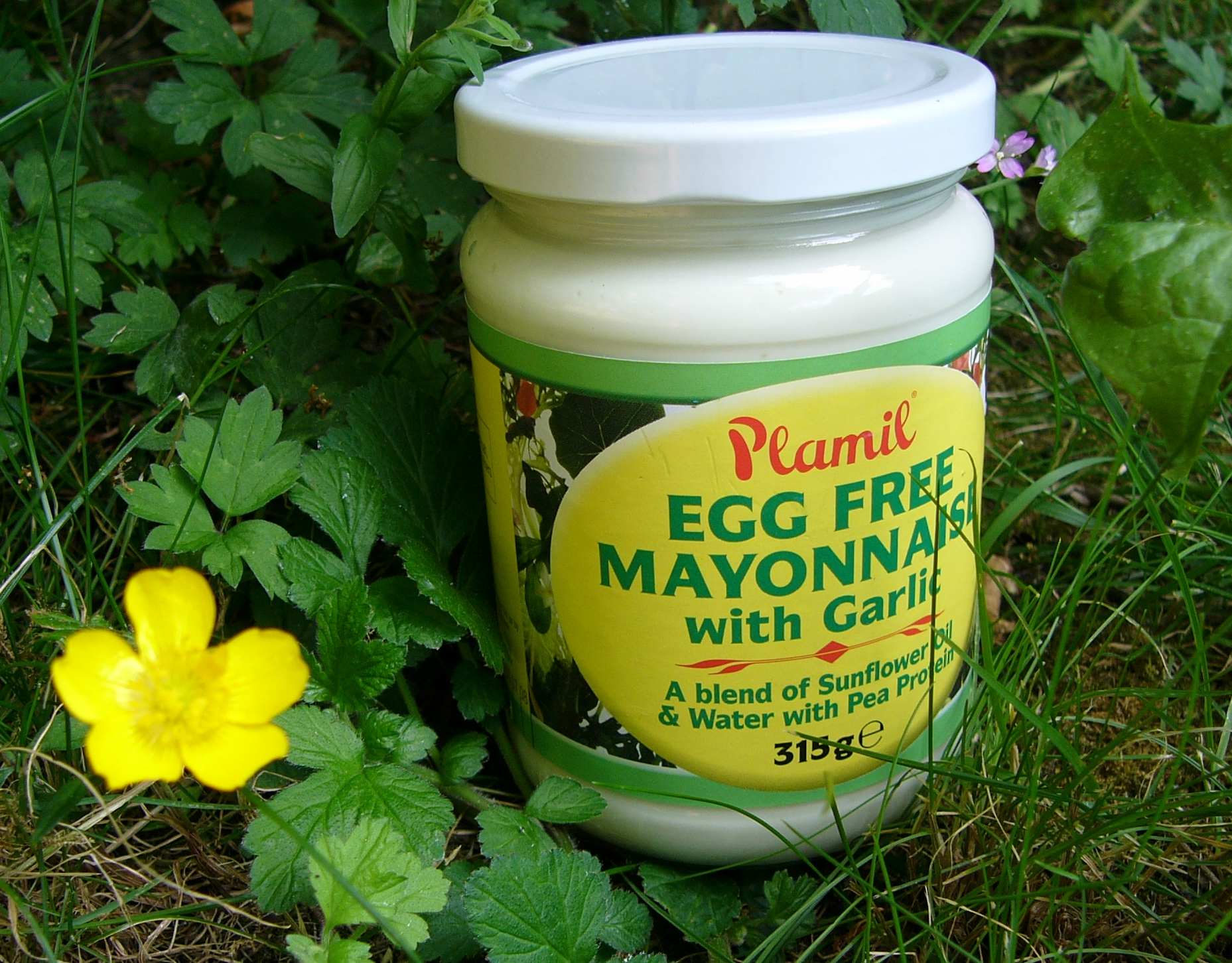 Vegan mayonnaise recipes dishmaps - Mayonnaise without eggvegan recipes ...
