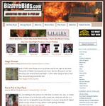 BizarreBids.com