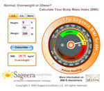 The Sageera BMI Calculator and Scale (screenshot)