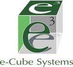 e-Cube Systems Logo