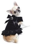 Ultimate Little Black Dress