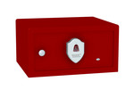 BioSaf® Denali™ - Executive Safe- $399.95