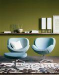 Schelly Chair