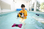Canine Hydrotherapy at The Ritz Canine