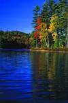 Serene Lake in western Maine reflecting foliage