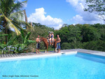 Belize Jungle Dome Pool