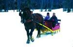 Sleigh Ride Bethel Maine