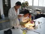 China Factory Designer