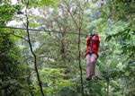 Canopy Zip Line in Rincon de la Vieja Area