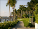 Palm Beach Sport Psychologist Adds Walk Therapy