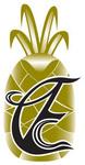 ECC Brand Mark