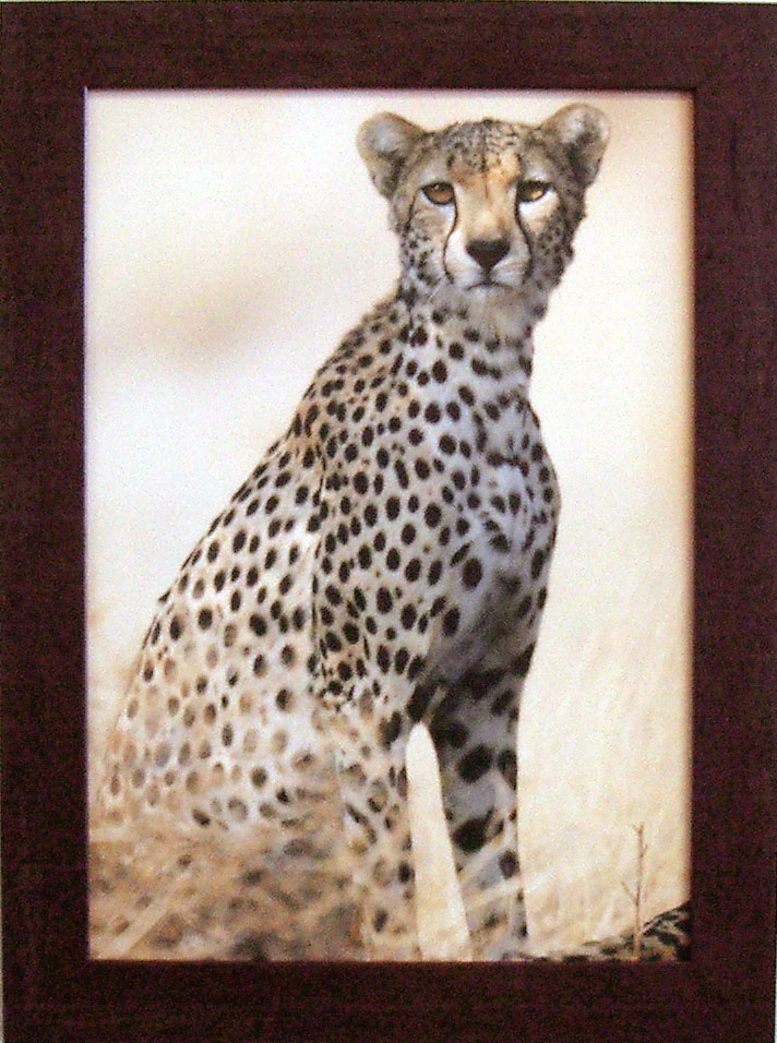 """Jeff Shulman """"Giraffe I"""""""