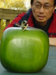 Me and My Square Watermelon
