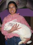 Susan Wong holds a rescued Flemish giant