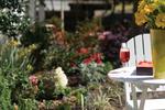 Historic Savannah GA Springtime gardens at Azalea Inn