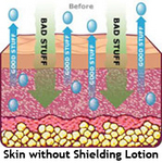 Skin without shielding lotion.