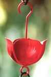 Red Flower Ant Moat (No. 2415, $7.95)
