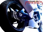 RoadLoK MID Arachnid GSX-R1000