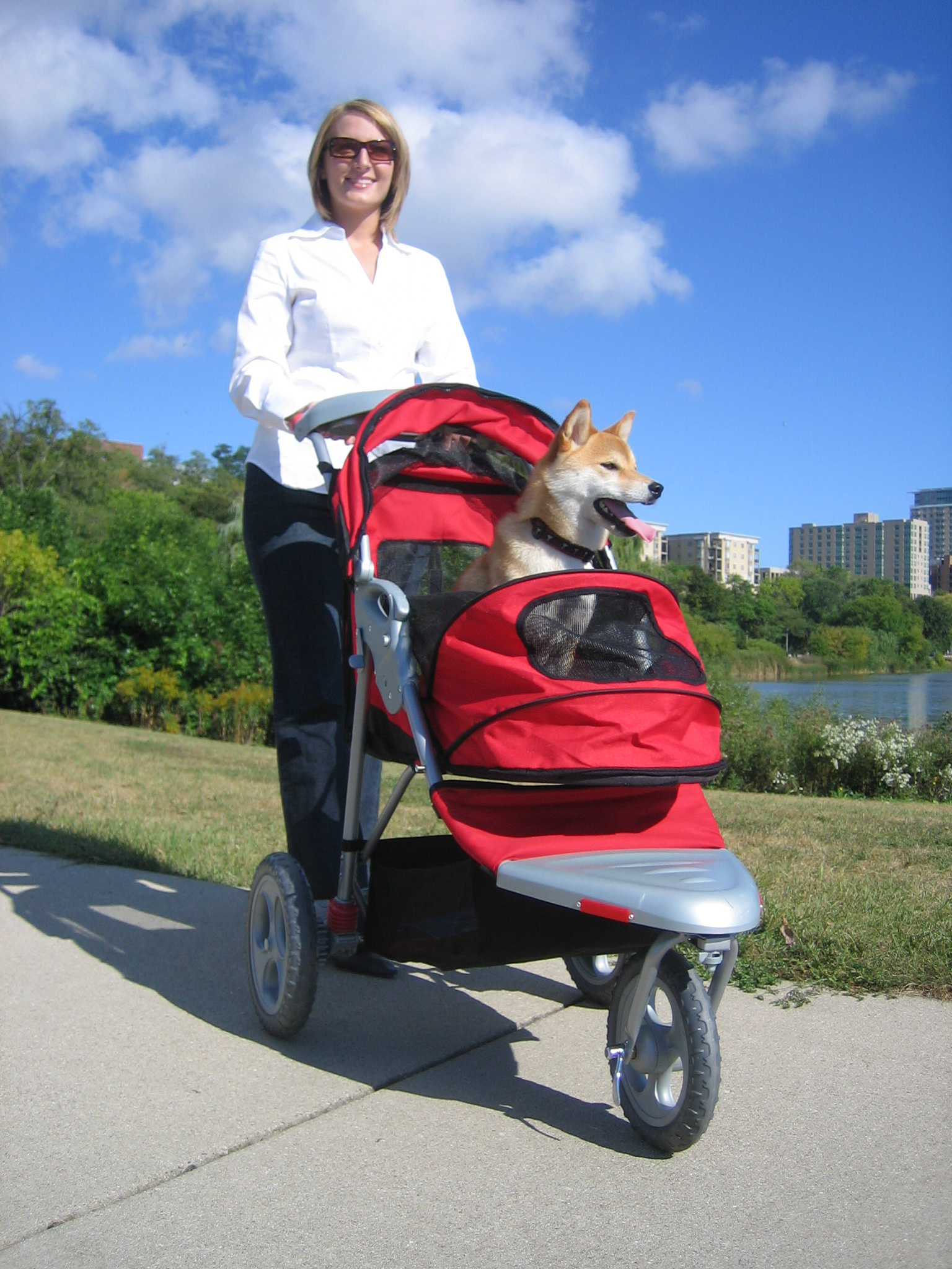 Selecting The Right Pet Stroller Makes A Positive