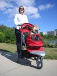 AT3 All Terrain Pet Stroller from JustPetStrollers.com