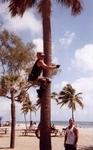 Col. Weinstein climbing some Palm