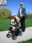 Jeep® Wrangler Pet Stroller shown open and with sun shade extended