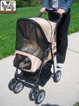 The Jeep® Wrangler Pet Stroller with an adult Shiba Inu dog