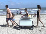 Perfect Beach cart for the family!