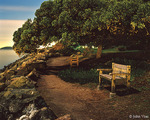 """Fairy Tale Benches"" Copyright 2006 by John Vias"