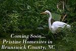 Coming Soon-Somerset at Springmill Plantation
