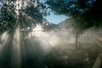 Fog Effects