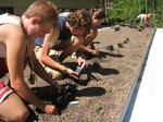 Waldsee campers planting the BioHaus Green Roof.