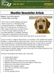 """Year of the Dog"" Newsletter"