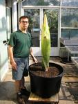 "Alessandro Chiari, Ph.D., Plant Propagator, Brooklyn Botanic Garden  at 60"" & titan arum at 45""August 2, 2006 (Growth measured at 39"" on 8/1)"