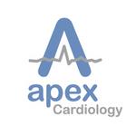 Apex  Logo